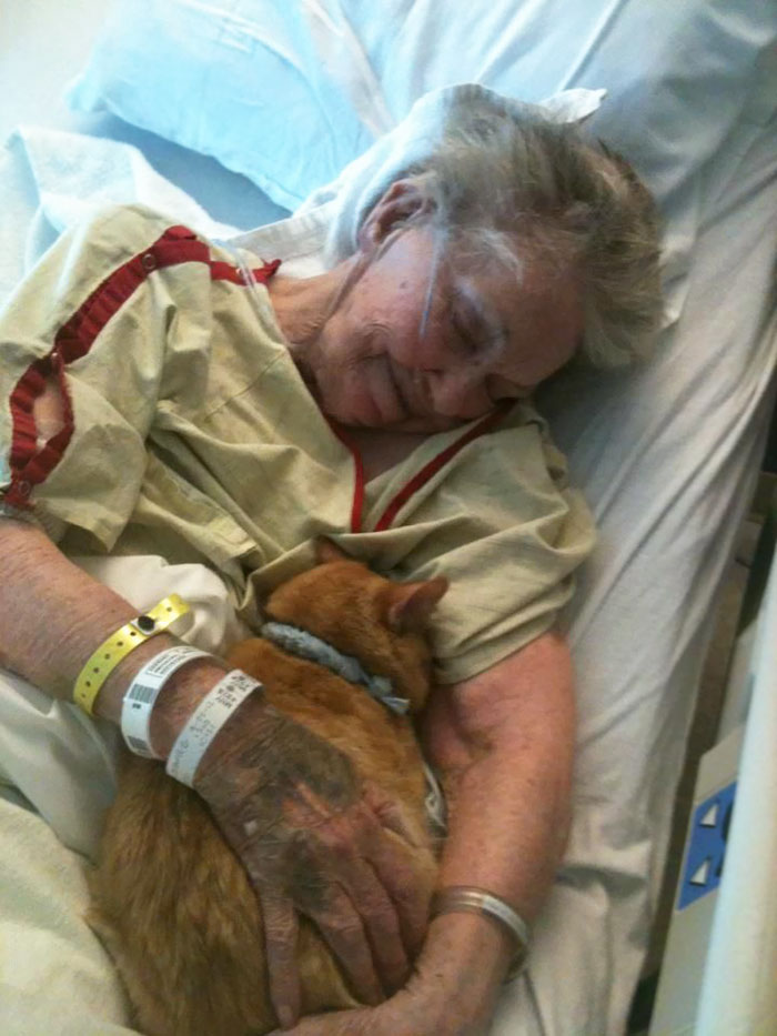 10 People's Last Wishes That Will Make You Cry