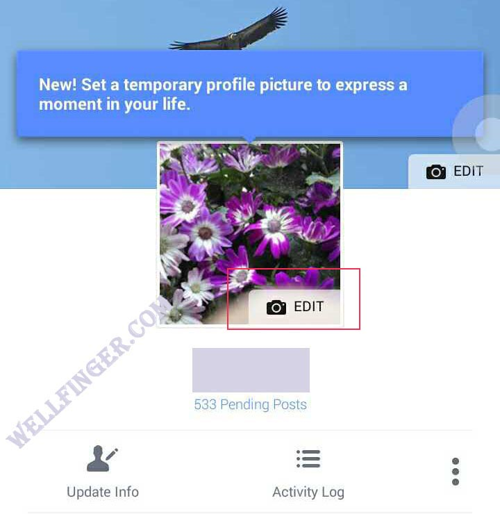 How to add a temporary profile picture on facebook ?